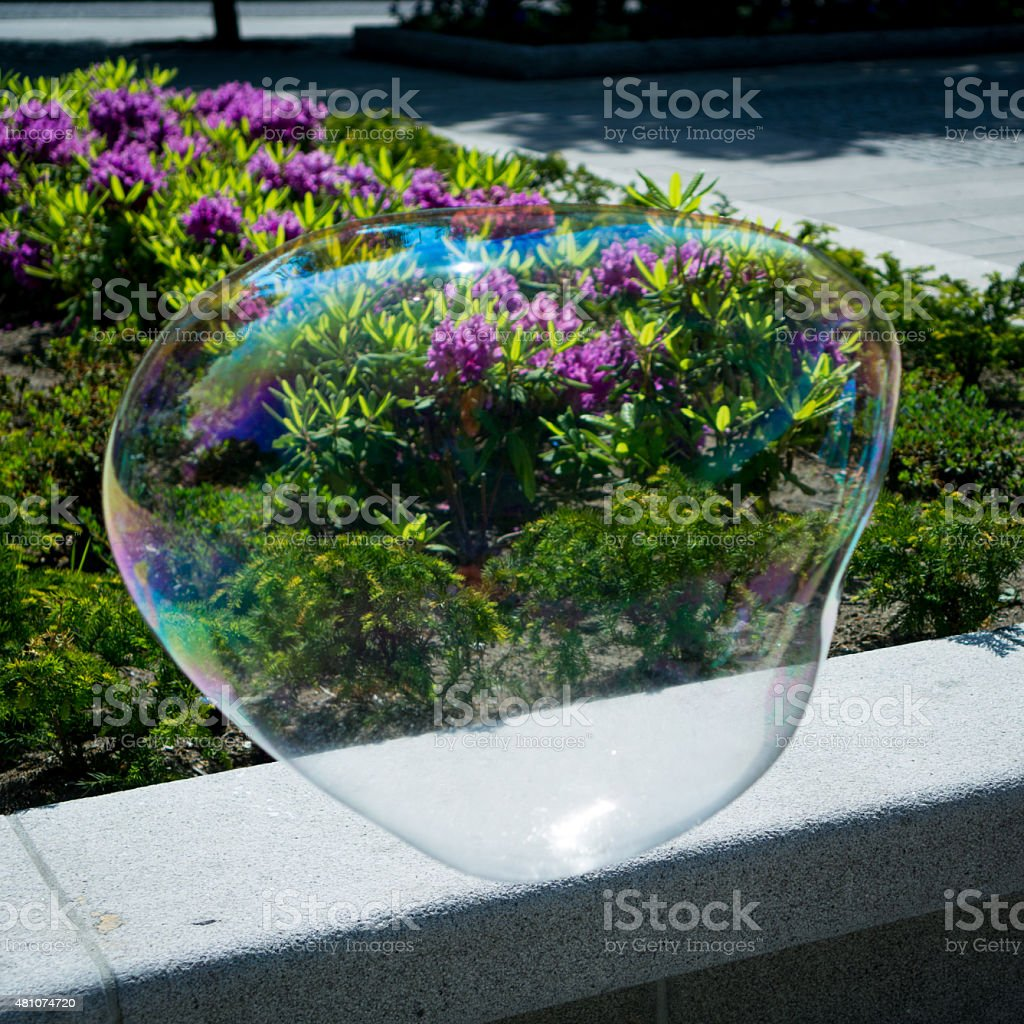 Bubble floating in the air with flowers in the background stock photo
