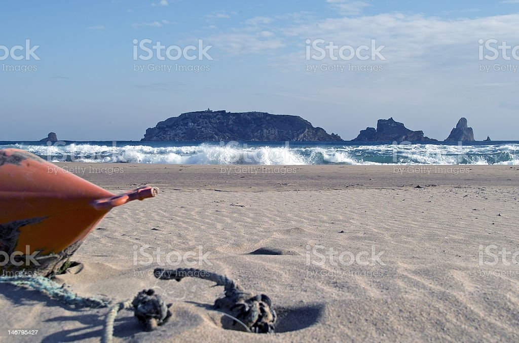 bolla stock photo