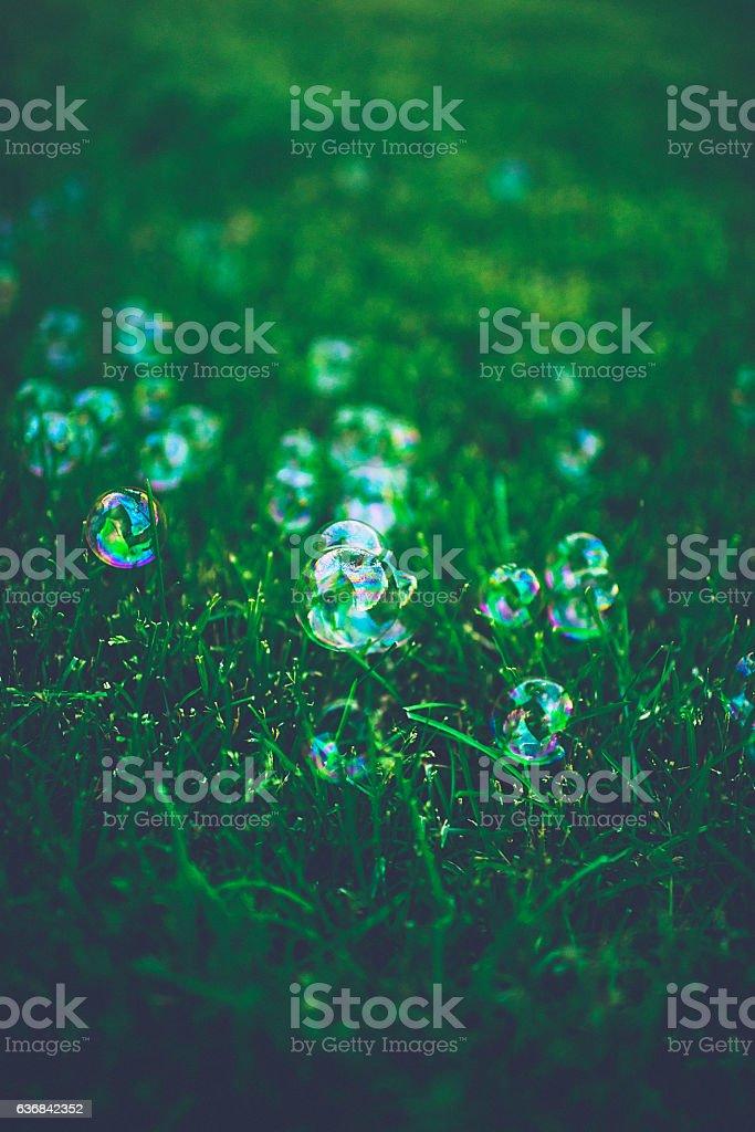 Bubbles on a vibrant grass lawn stock photo