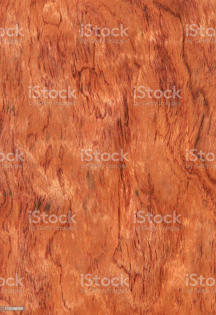 Bubinga royalty-free stock photo