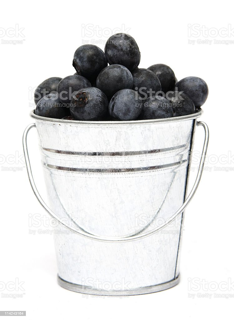 Bucket of Blueberries stock photo