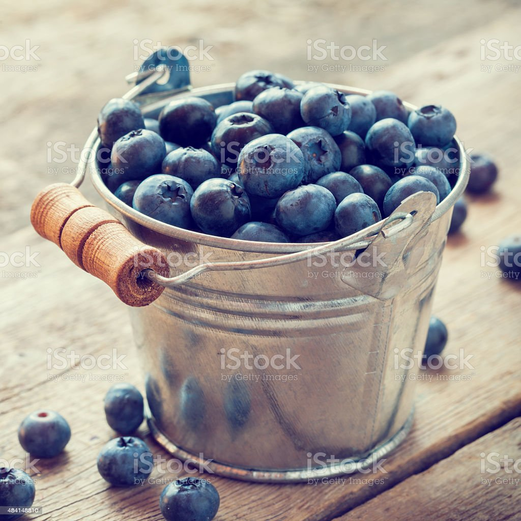 Bucket of blueberry. stock photo