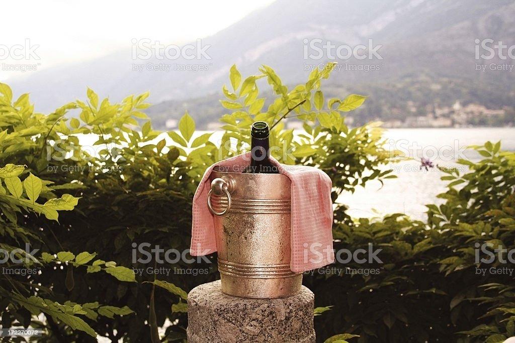 Bucket of Bubbly. stock photo