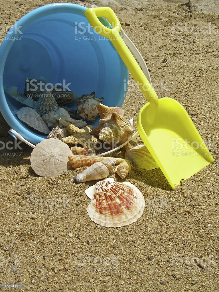Bucket of Seashells royalty-free stock photo