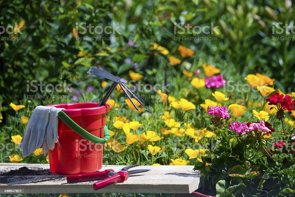 Bucket with tools in a flower garden stock photo