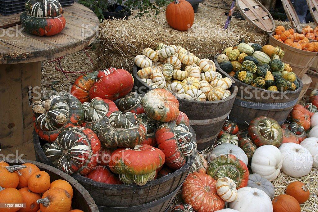 Buckets of pumpkins stock photo