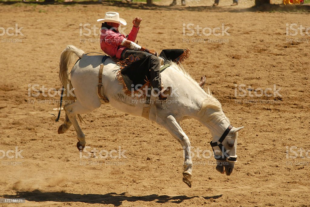 bucking bronc stock photo