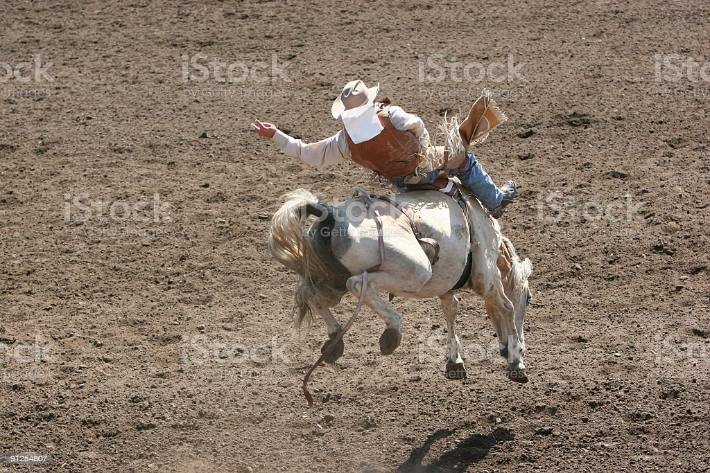 Bucking Bronco at the Rodeo royalty-free stock photo