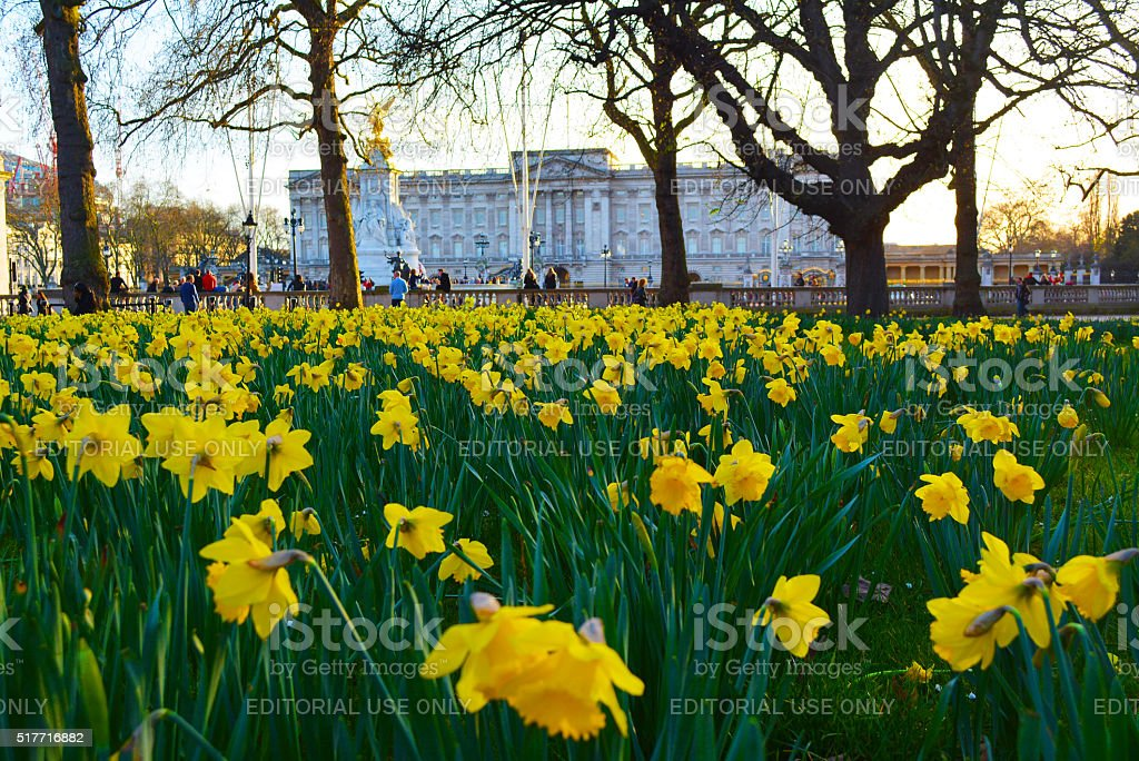 Buckingham Palace in Spring stock photo