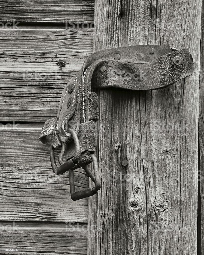 buckle study royalty-free stock photo