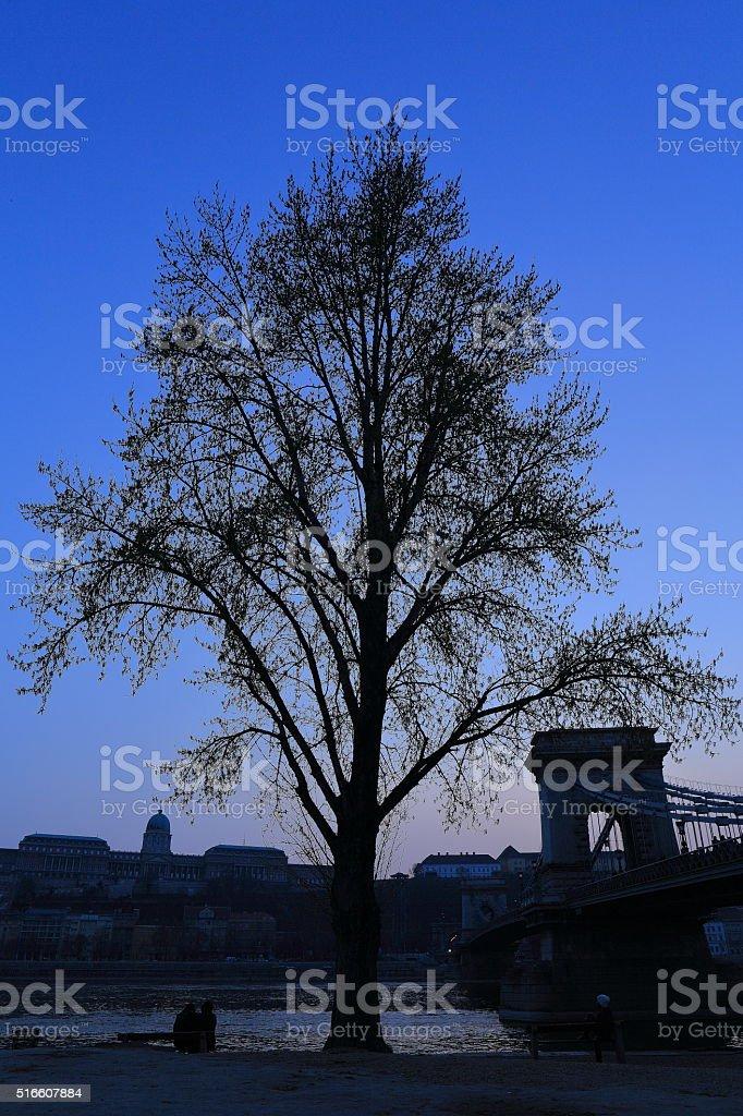 Buda Castle and Chain Bridge in Budapest, Hungary stock photo