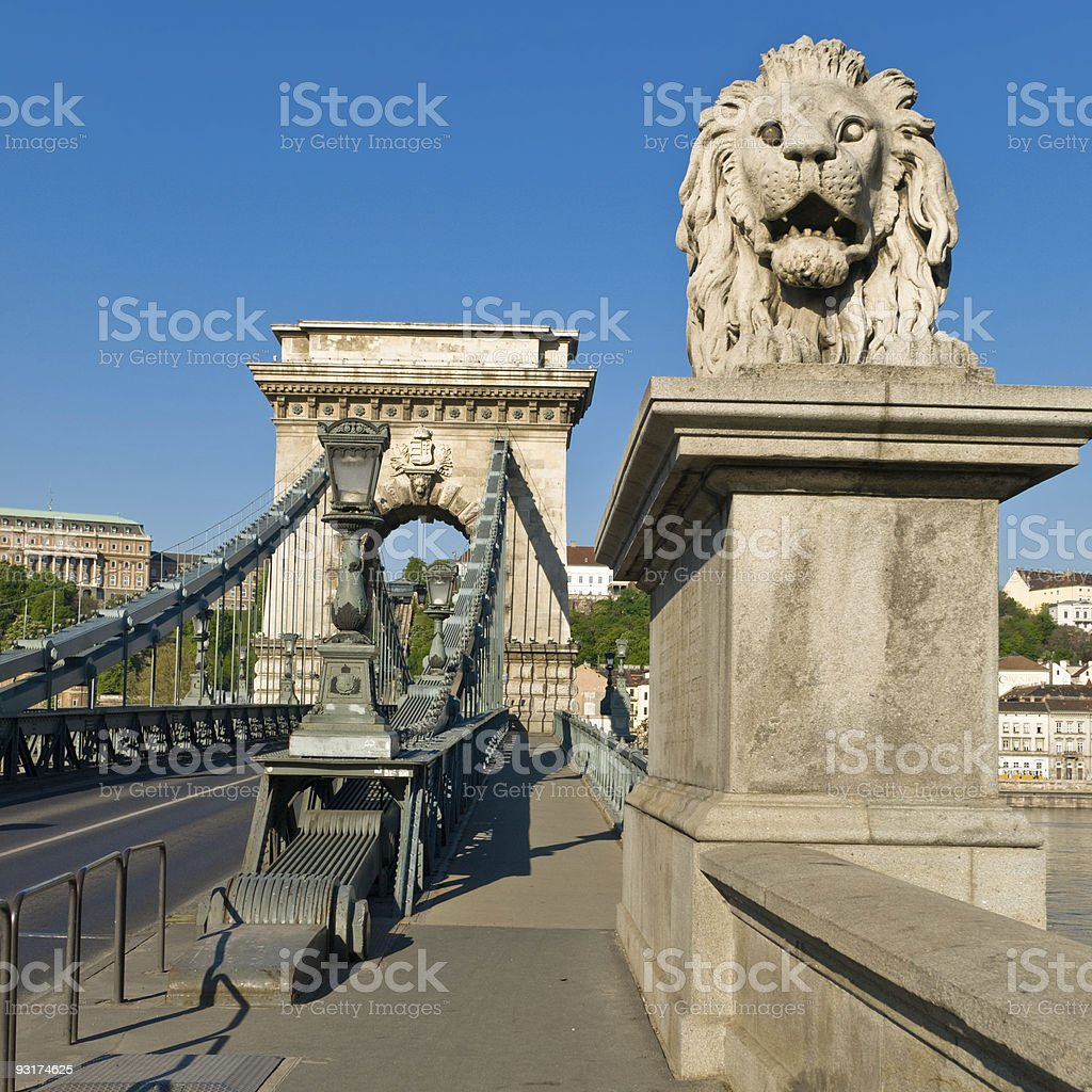 Budapest Chain Bridge with Lion statue royalty-free stock photo