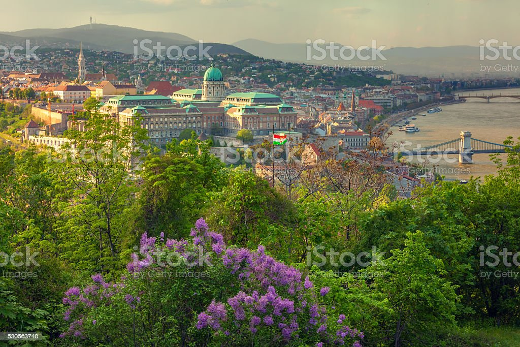 Budapest cityscape with the Buda Castle stock photo