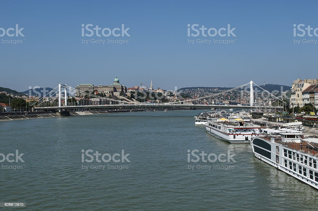 Budapest skyline with the Danube river, Elizabeth bridge stock photo