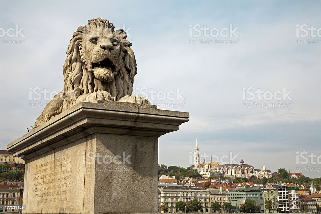 Budapest - statue of lion from Chain bridge royalty-free stock photo