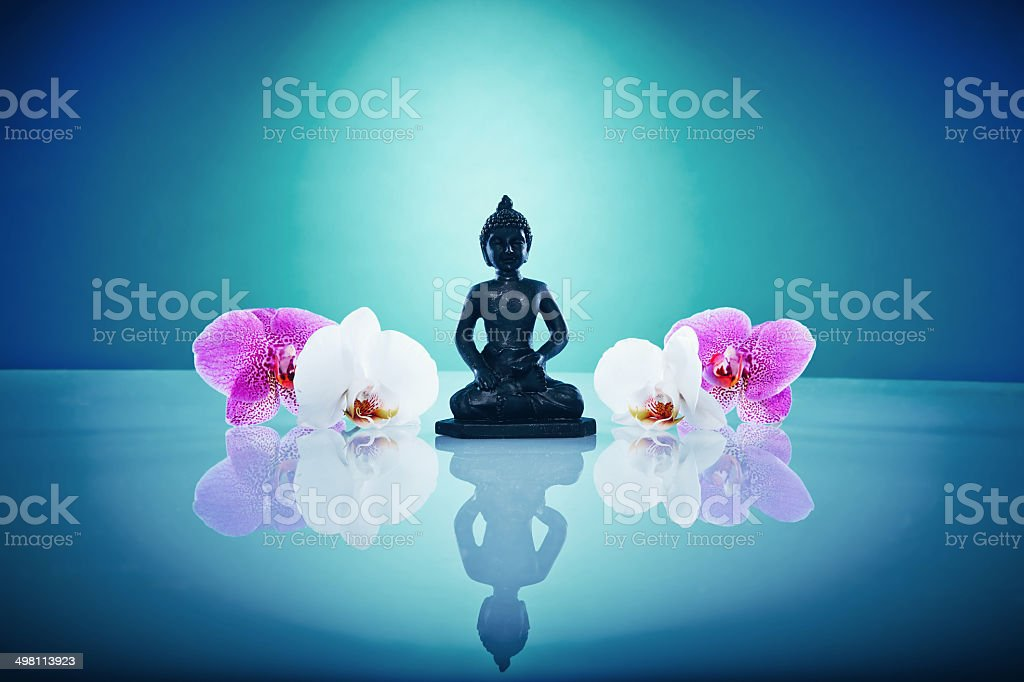 Buddah and orchis stock photo