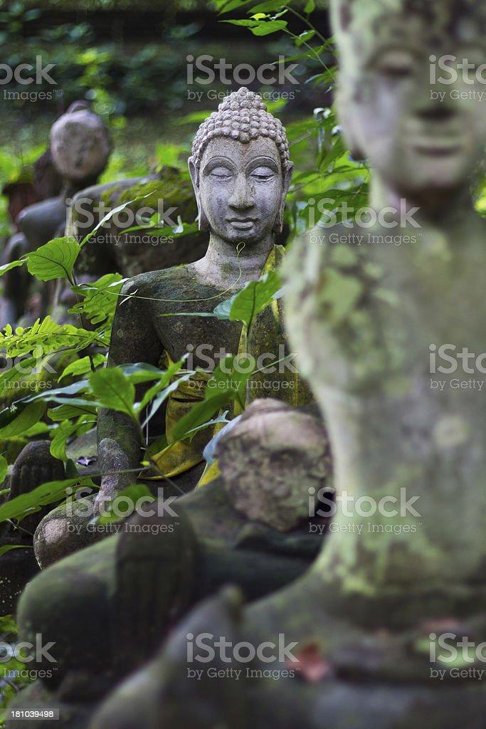 Buddha head In Wat Umong Chiangmai royalty-free stock photo