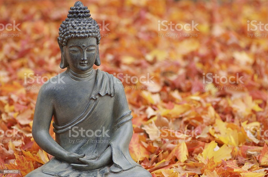 Buddha in Fall Leaves royalty-free stock photo