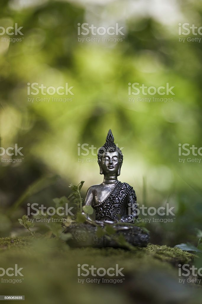 Buddha in the Nature royalty-free stock photo