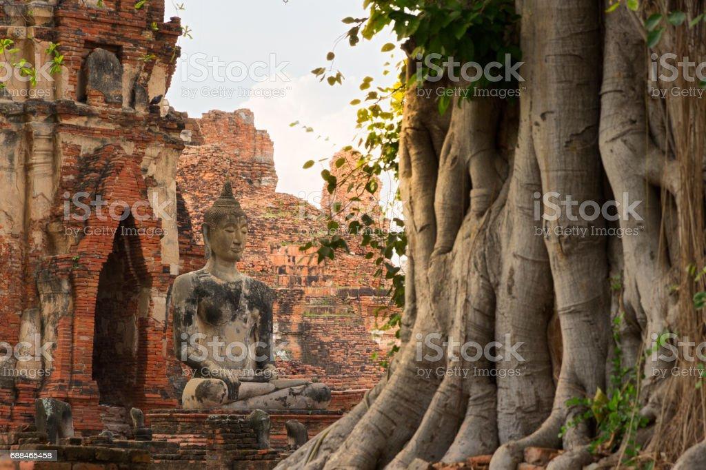 Buddha of Ayutthaya stock photo
