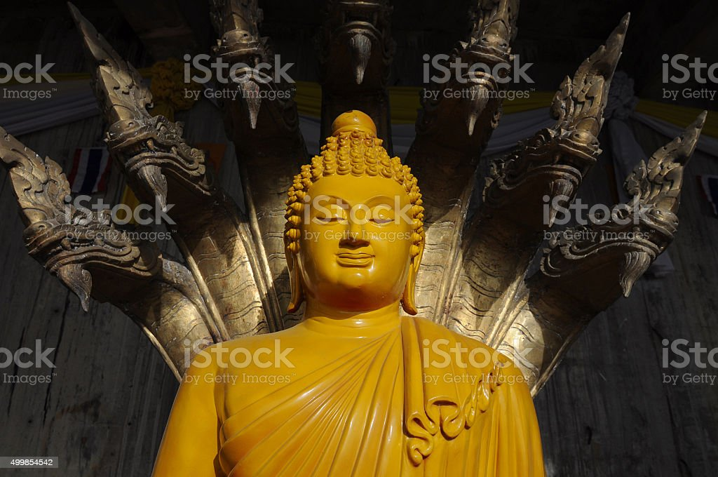 Budda royalty-free stock photo