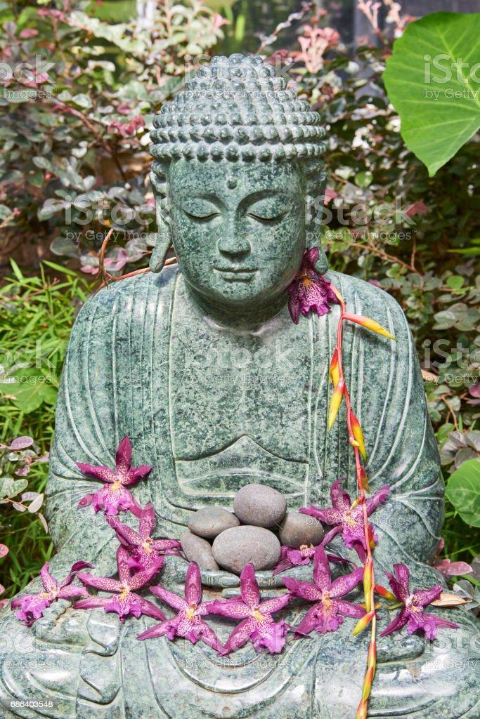 buddha statue at Selby Botanical Gardens stock photo