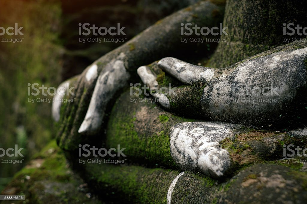 Buddha statue covered by moss in ancient temple stock photo