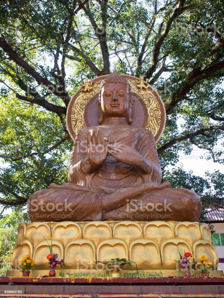 Buddha statue sitting under the tree. Thailand travel landmark. stock photo