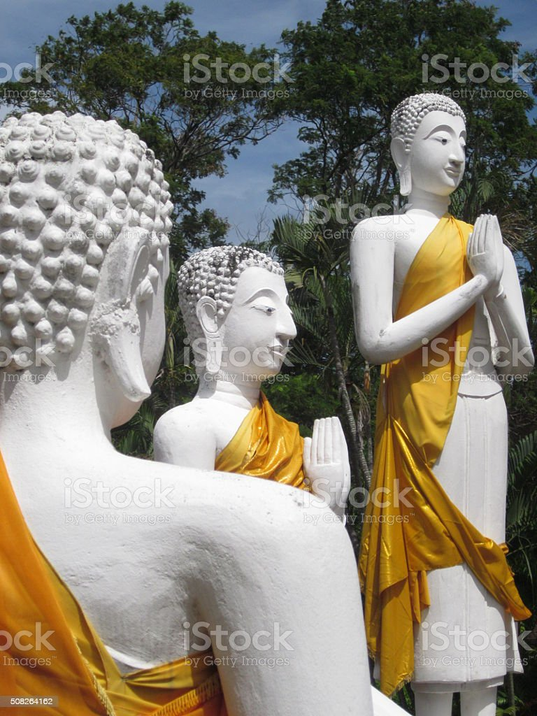 Buddhas at Ayutthaya Historical Park, Thailand stock photo