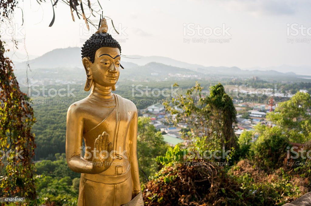 Buddha's palm stock photo