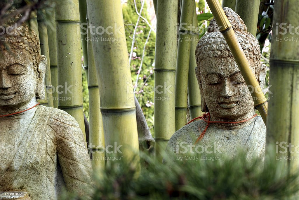 Buddhas silently contemplating bamboo forest royalty-free stock photo