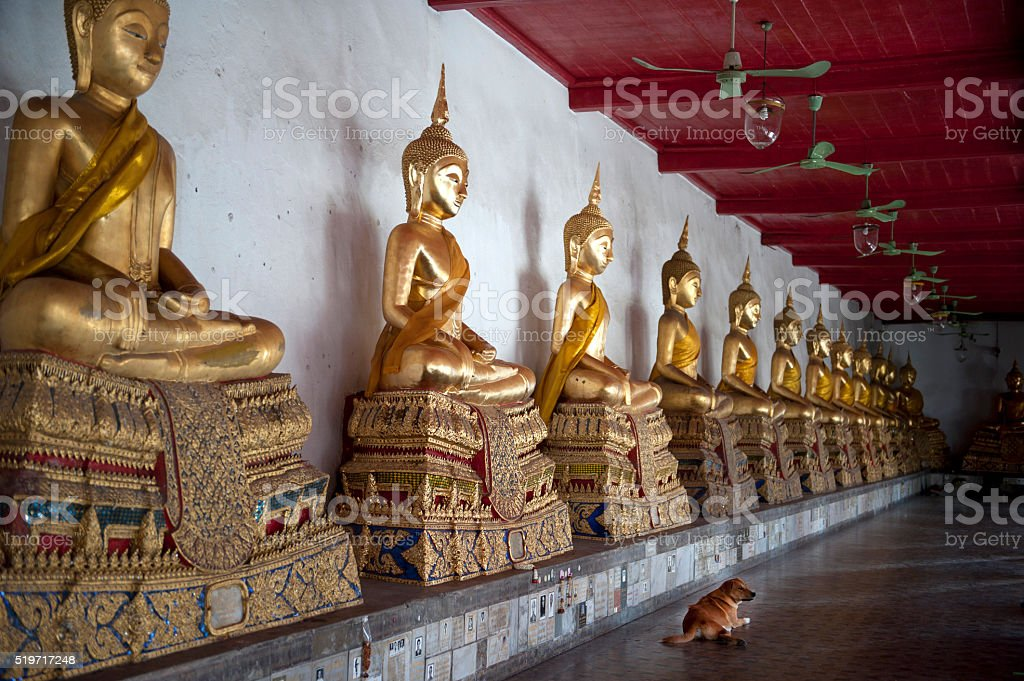 Buddha's tolerance stock photo