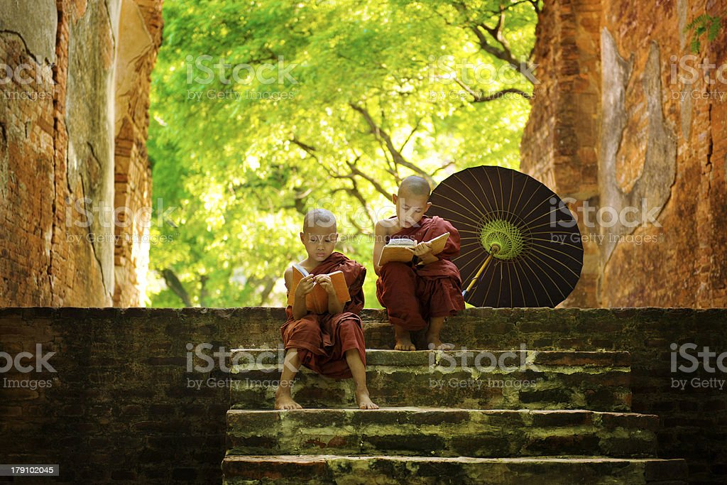 Buddhist monk reading outdoors stock photo