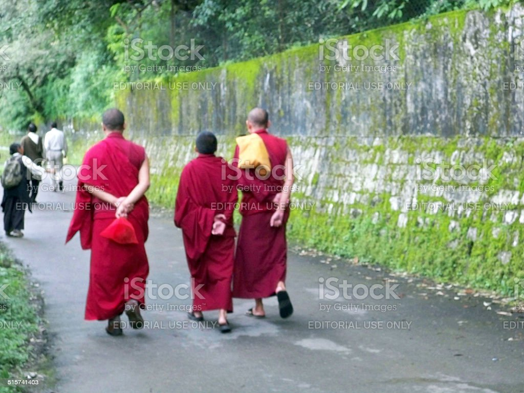 Buddhist monks going to the Dalai Lama's temple. stock photo