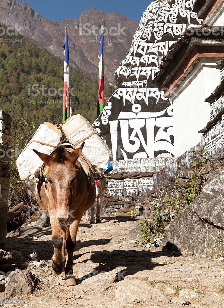 Buddhist prayer mani walls and mule stock photo