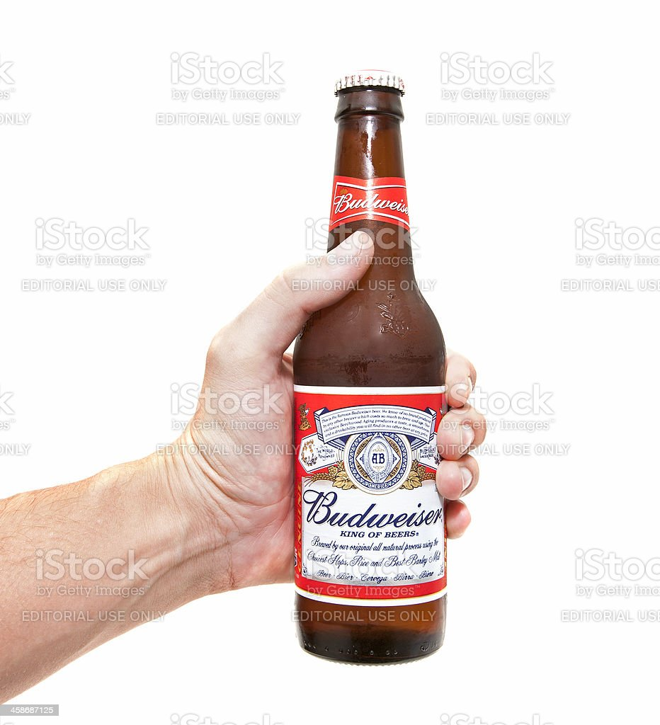 Budweiser Beer Bottle in Hand royalty-free stock photo
