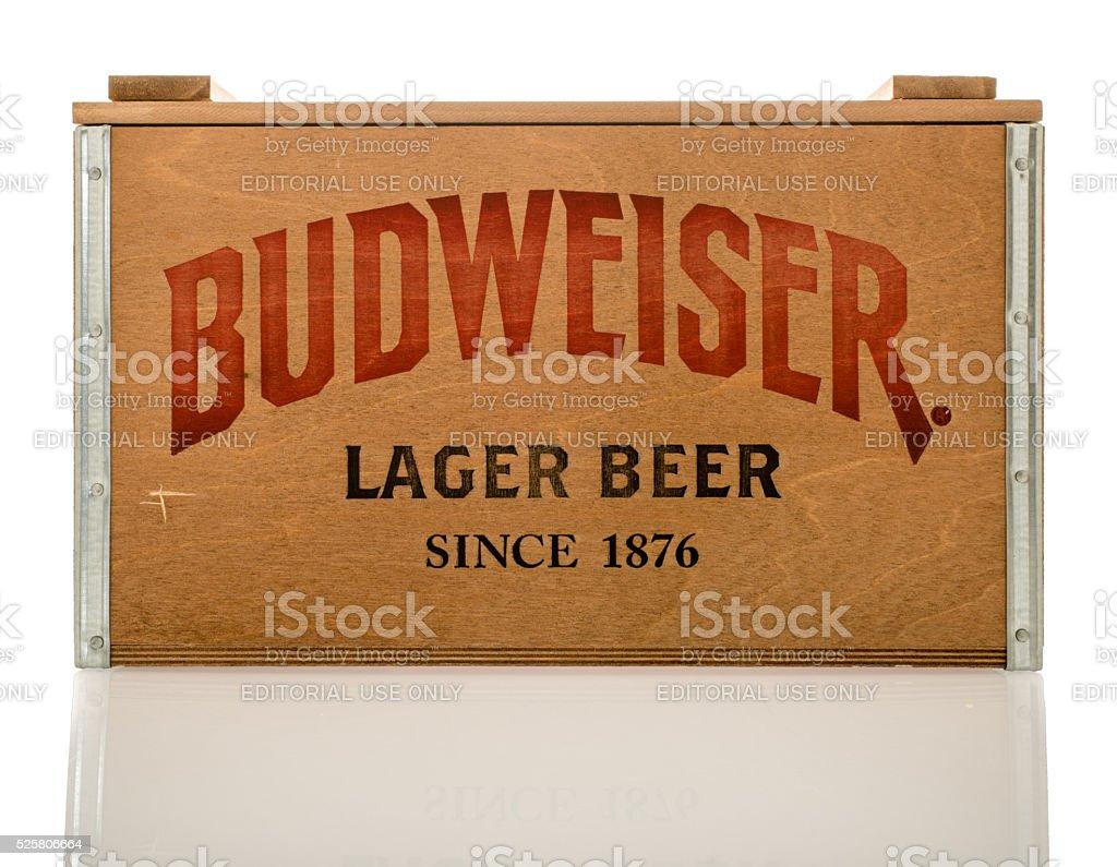 Budweiser Lager Beer stock photo