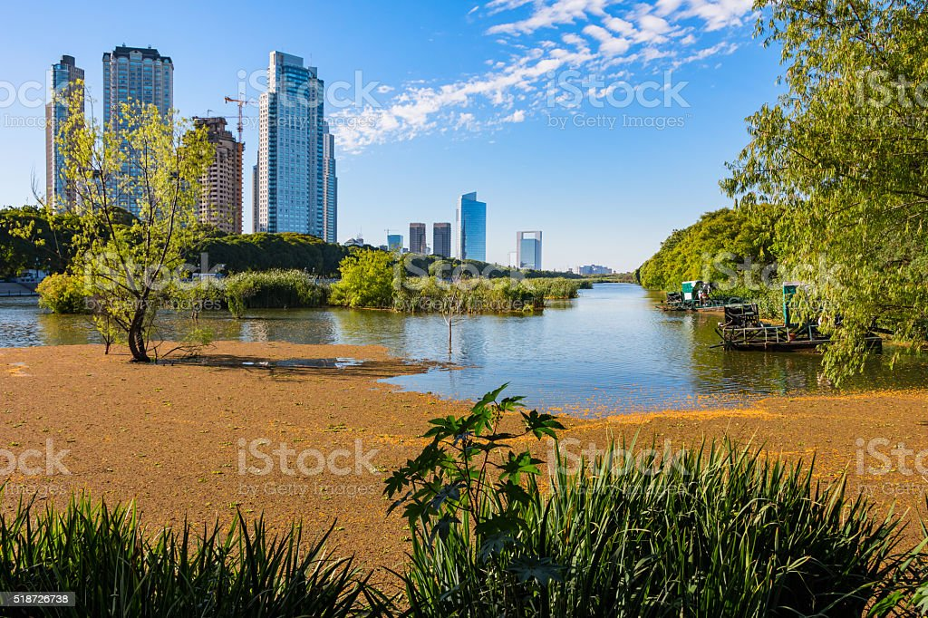 Buenos Aires Puerto Madero Skyscrapers and Buenos Aires Ecological Reserve stock photo