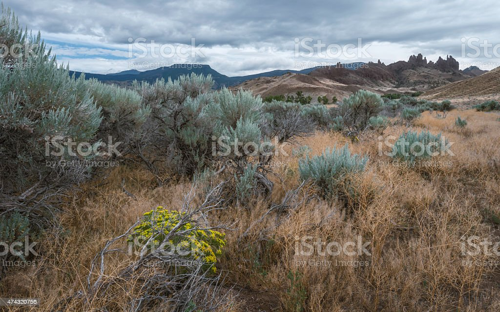 Buffalo Bill State Park, Cody, Wyoming, USA. stock photo