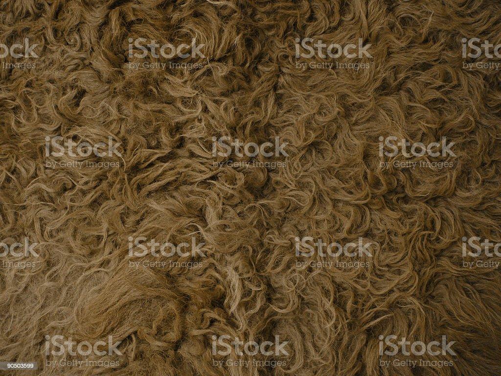 buffalo hide royalty-free stock photo