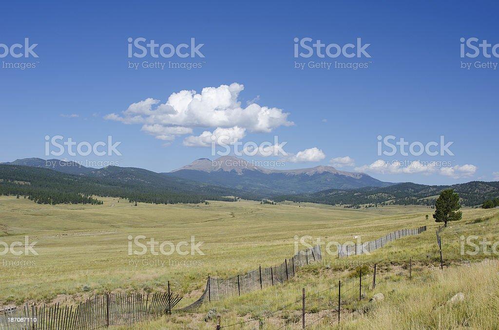 Buffalo Peaks Mountain on a Summer Day stock photo
