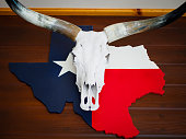 Buffalo skull with longhorn put on Texas map paint