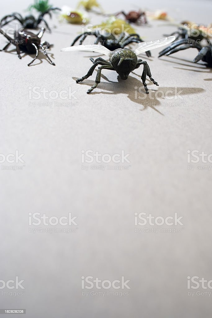 Bug attack royalty-free stock photo