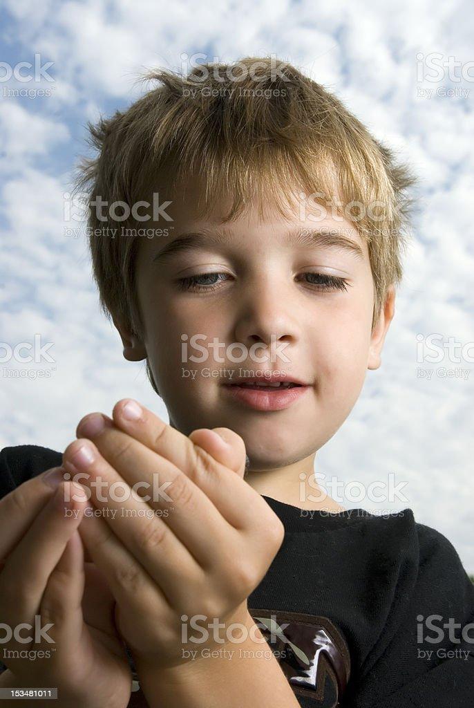 Bug Boy stock photo