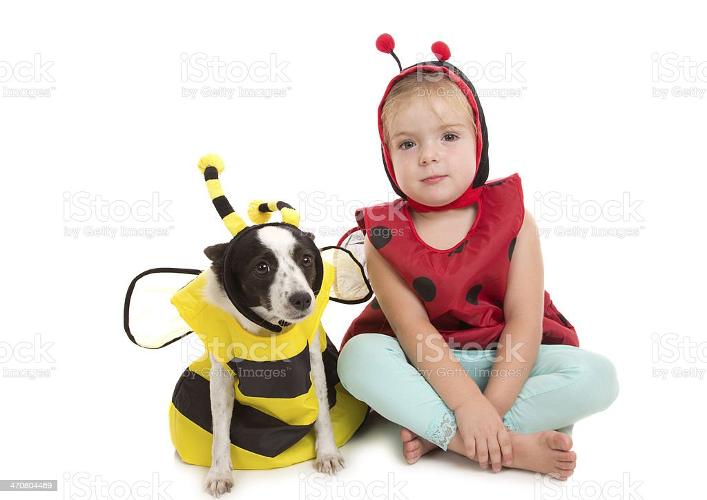 Bug Friends stock photo