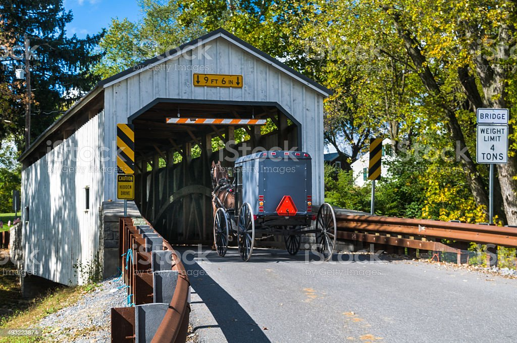 Buggy on the Bridge stock photo