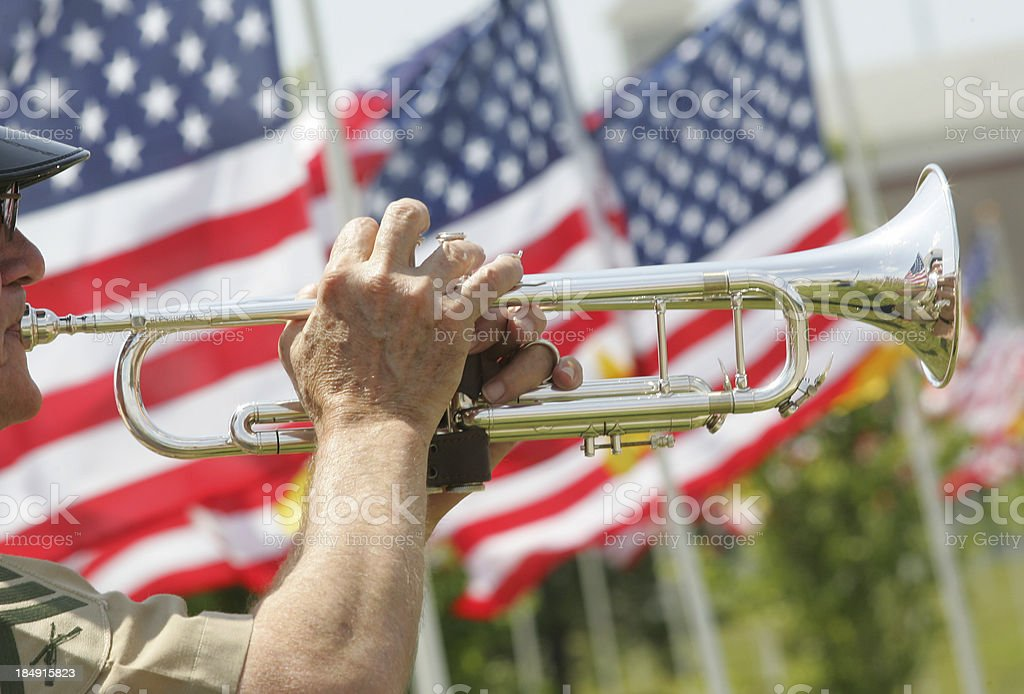 Bugler with american flags stock photo