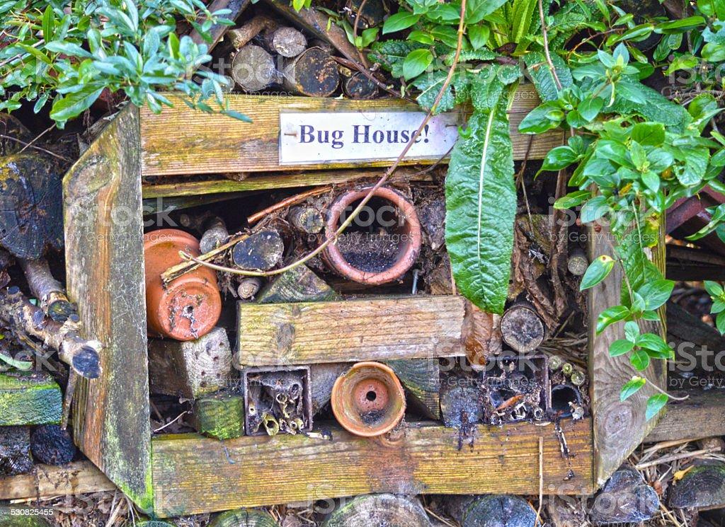 Bugs House photo libre de droits