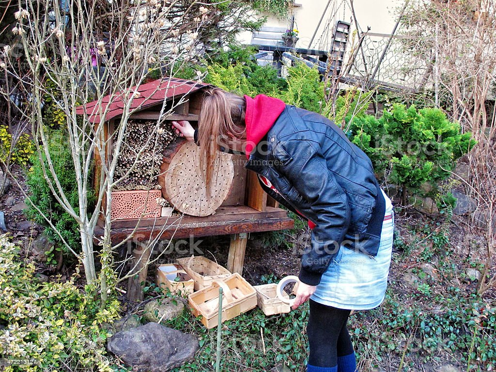 building Insect hotel stock photo