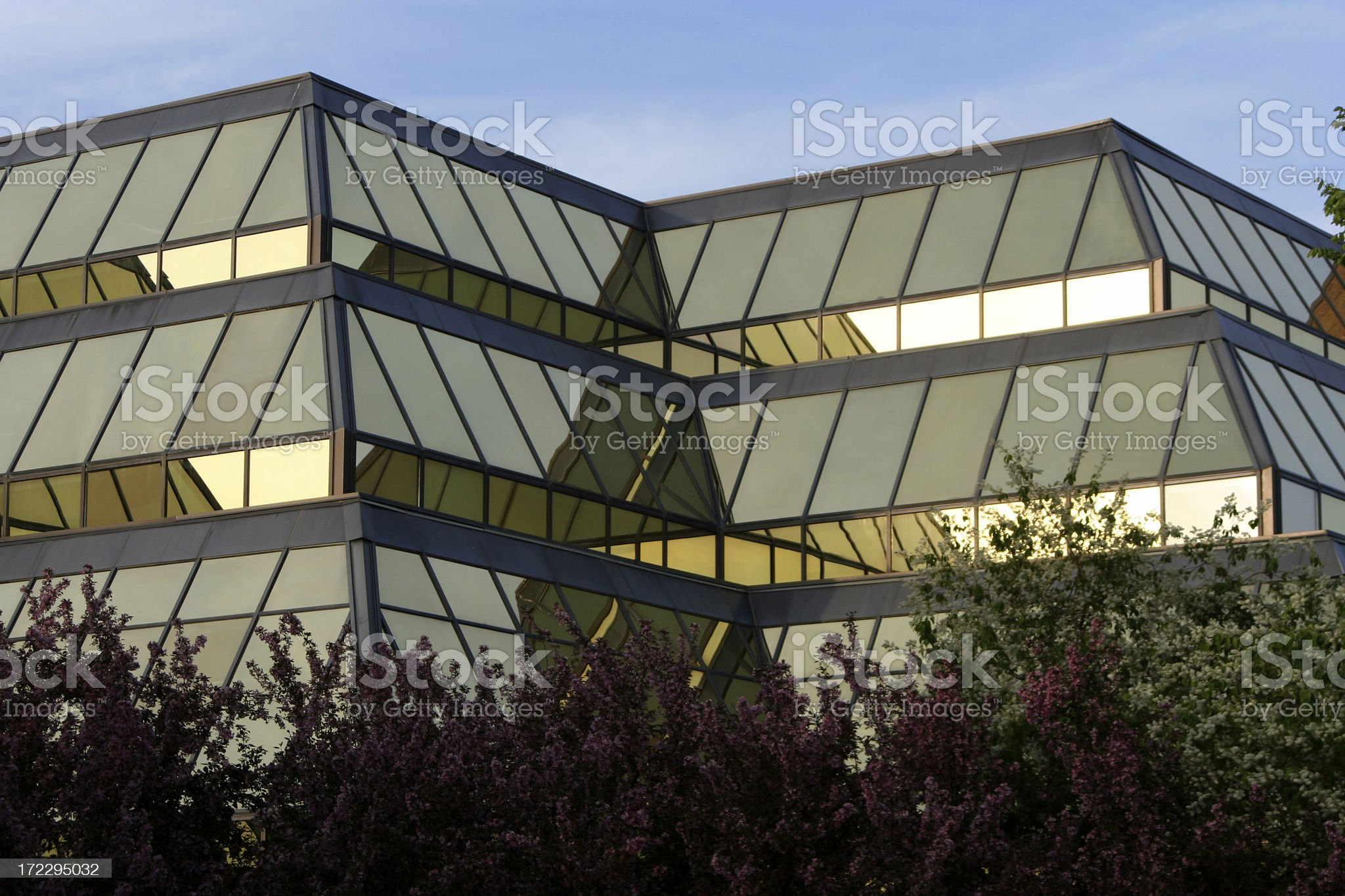 Building office royalty-free stock photo